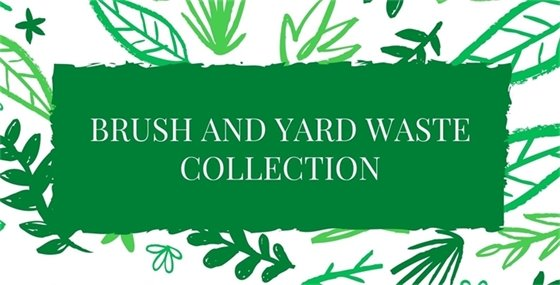 Brush and Yard Waste Collection